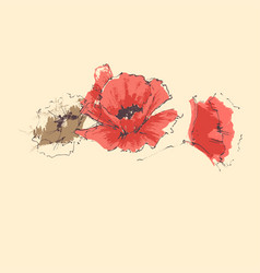 red poppy anniversary card vector image