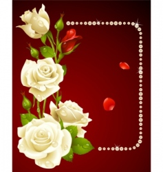 white rose and pearls vector image