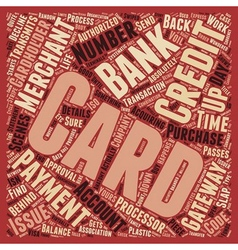 How Credit Cards Work text background wordcloud vector image vector image