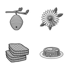 A hive on a branch a bee on a flower a honeycomb vector