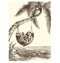 Beach palm tree and hammock sea view vector