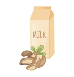 brazilian nut milk vector image