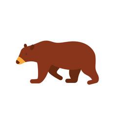 brown bear flat big wild vector image