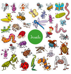 Cartoon insects animal characters big set vector
