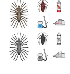 Cockroach and equipment for disinfection cartoon vector