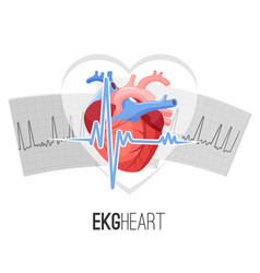 ekg readings on paper and human heart promo emblem vector image