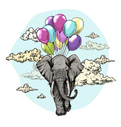 elephant flying with air balloons in sky vector image