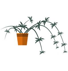 flower plant in pot interior tree vector image