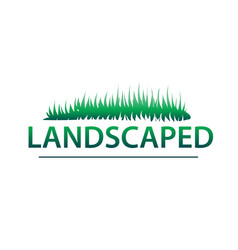 landscaped vector image
