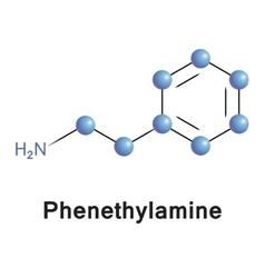 Phenylethanolamine vector