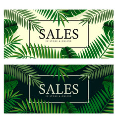 summer sale banners with palm background for vector image