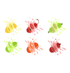 Sweet fruits and berries with splashes set melon vector