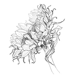 sunflower pen drawing vector image vector image