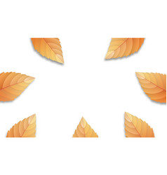 autumn leaves background fall leaves frame vector image