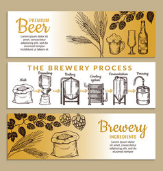 Banners set of brewery of beer vector