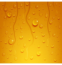 beer background with water drops vector image