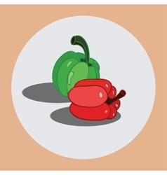 Bulgarian pepper vector