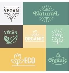 Natural and Health food Organic vector image