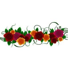Roses floral design vector