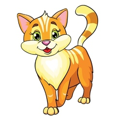 cute cat on white background vector image
