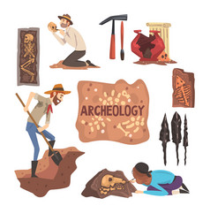 Archeology and paleontology set scientist working vector