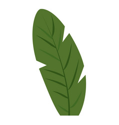 banana leaf icon cartoon style vector image