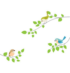 beautiful birds sitting tree branch vector image