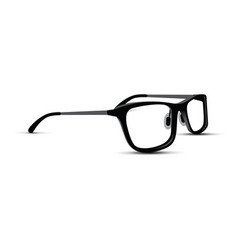Black and white glasses vector