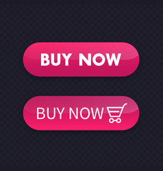 buy now buttons for web vector image