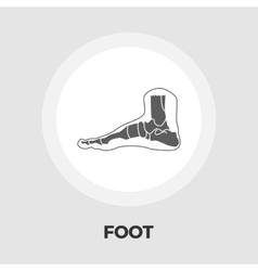 Foot anatomy flat icon vector