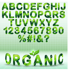 green modern font with organic elements vector image