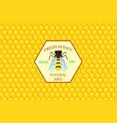 Honey label template vector