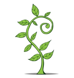 Little growing plant vector image