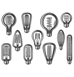 vintage lightbulbs collection vector image