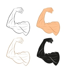 Set of Arm vector image