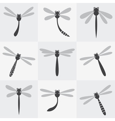 Dragonfly group vector image vector image