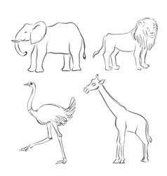 cartoon sketch animals vector image