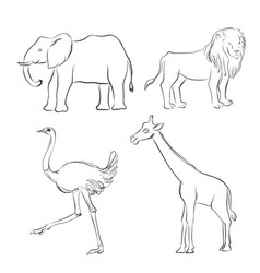 Cartoon sketch of animals vector