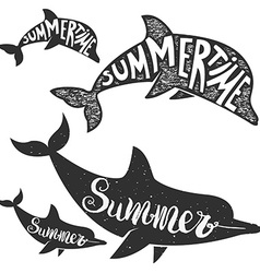 Dolphins with lettering Summer time vector