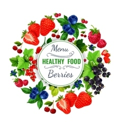 Fresh berries poster or fruit menu vector image
