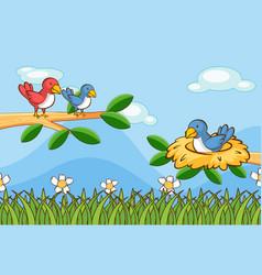 Scene with birds in garden vector