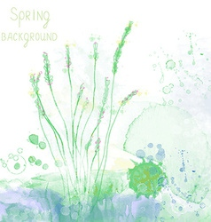 Spring spa background with herbs and grass vector image