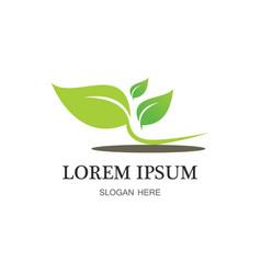 green leaf organic logo vector image vector image