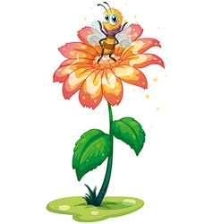 A small bee above the giant flower vector