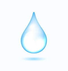 clear water drop on white vector image