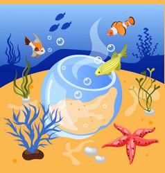 Isometric aquarium background vector