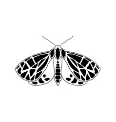 Moth in doodle style vector