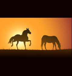 silhouette grazing horses at sunset vector image