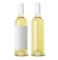 wine bottle isolated realistic 3d vector image