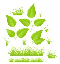 branches and grass vector image